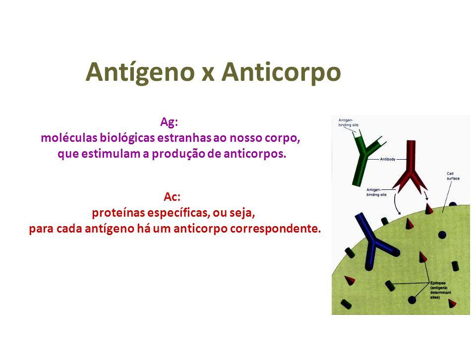 Antígeno x Anticorpo Ag: moléculas biológicas estranhas ao nosso corpo, que estimulam a produção de anticorpos. Ac: proteínas específicas, ou seja, pa