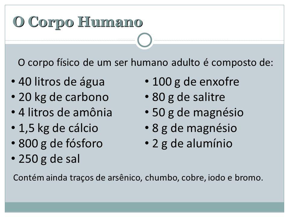 O Corpo Humano 40 litros de água 20 kg de carbono 4 litros de amônia 1,5 kg de cálcio 800 g de fósforo 250 g de sal 100 g de enxofre 80 g de salitre 50 g de magnésio 8 g de magnésio 2 g de alumínio O corpo físico de um ser humano adulto é composto de: Contém ainda traços de arsênico, chumbo, cobre, iodo e bromo.