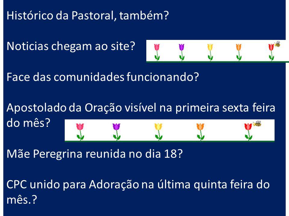 Histórico da Pastoral, também? Noticias chegam ao site? Face das comunidades funcionando? Apostolado da Oração visível na primeira sexta feira do mês?