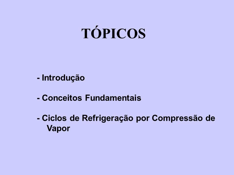 TÓPICOS - Introdução - Conceitos Fundamentais - Ciclos de Refrigeração por Compressão de Vapor