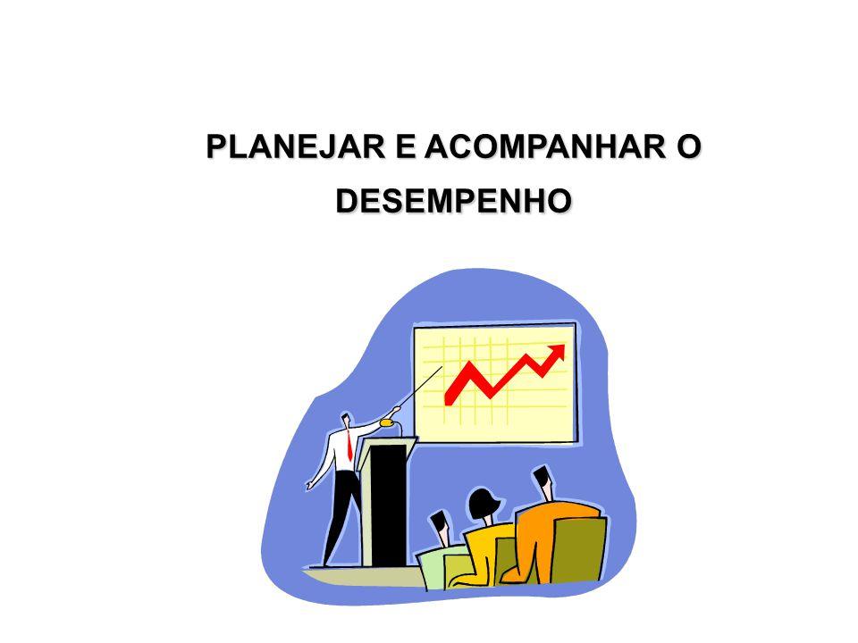 PLANEJAR E ACOMPANHAR O DESEMPENHO
