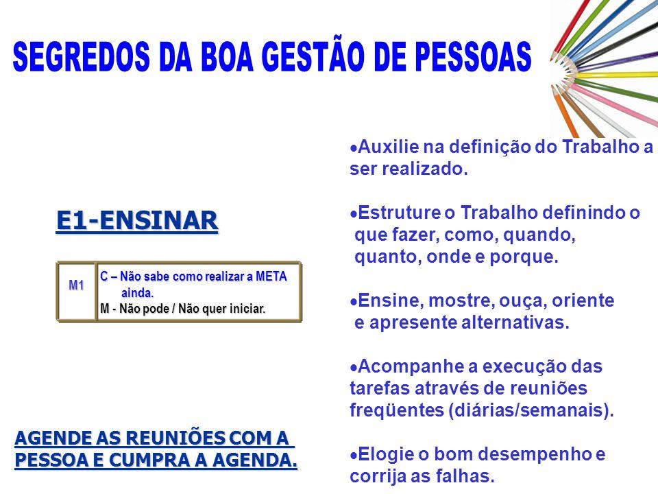 E1-ENSINAR Auxilie na definição do Trabalho a ser realizado.