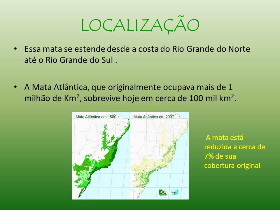 LOCALIZAÇÃO Essa mata se estende desde a costa do Rio Grande do Norte até o Rio Grande do Sul.
