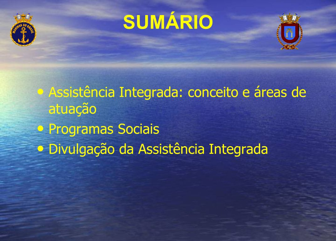 SUMÁRIO Assistência Integrada: conceito e áreas de atuação Programas Sociais Divulgação da Assistência Integrada