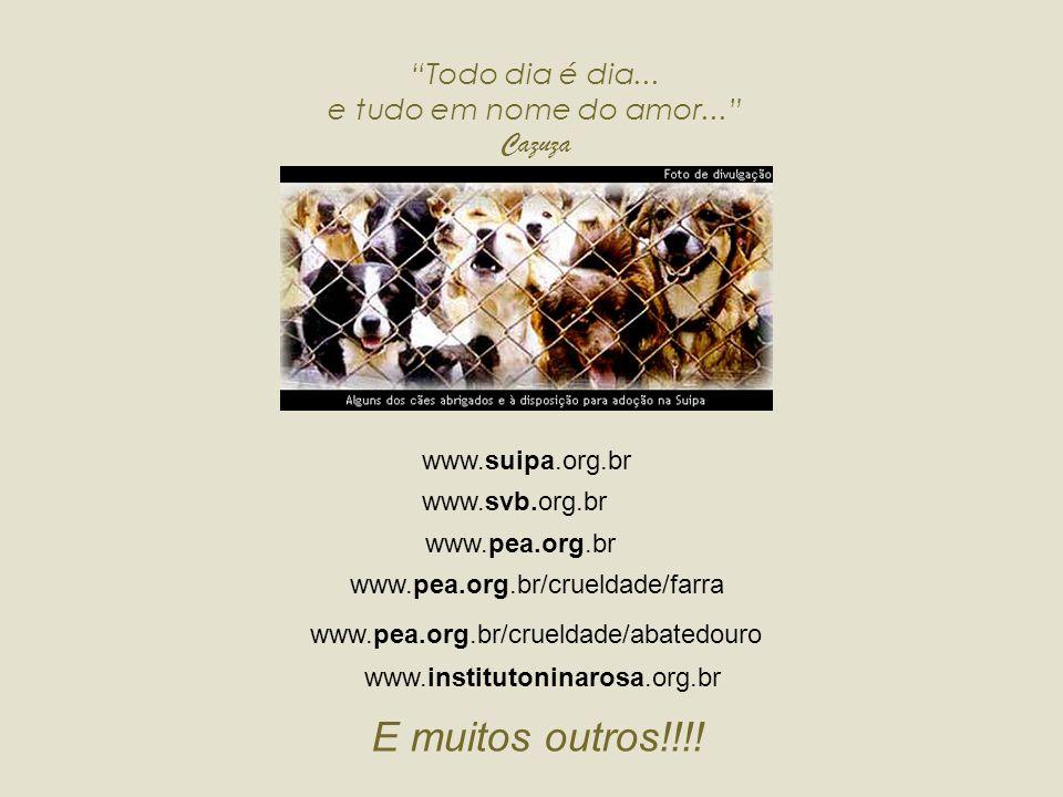 S S ites Criação : TEA LÓTUS tealotus3@yahoo.com.br...próximo slide Visite-os!