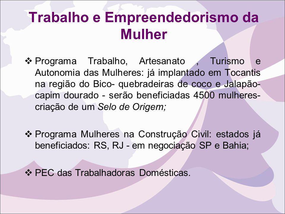 Programa Trabalho, Artesanato, Turismo e Autonomia das Mulheres: já implantado em Tocantis na região do Bico- quebradeiras de coco e Jalapão- capim do