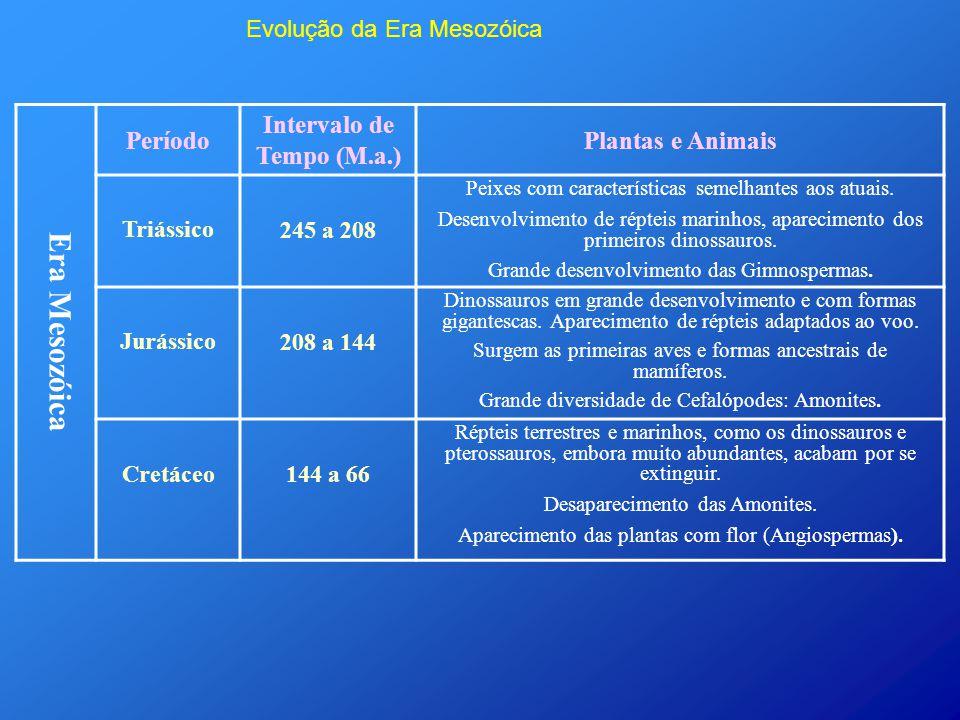 Evolução da Era Mesozóica Era Mesozóica Período Intervalo de Tempo (M.a.) Plantas e Animais Triássico 245 a 208 Peixes com características semelhantes