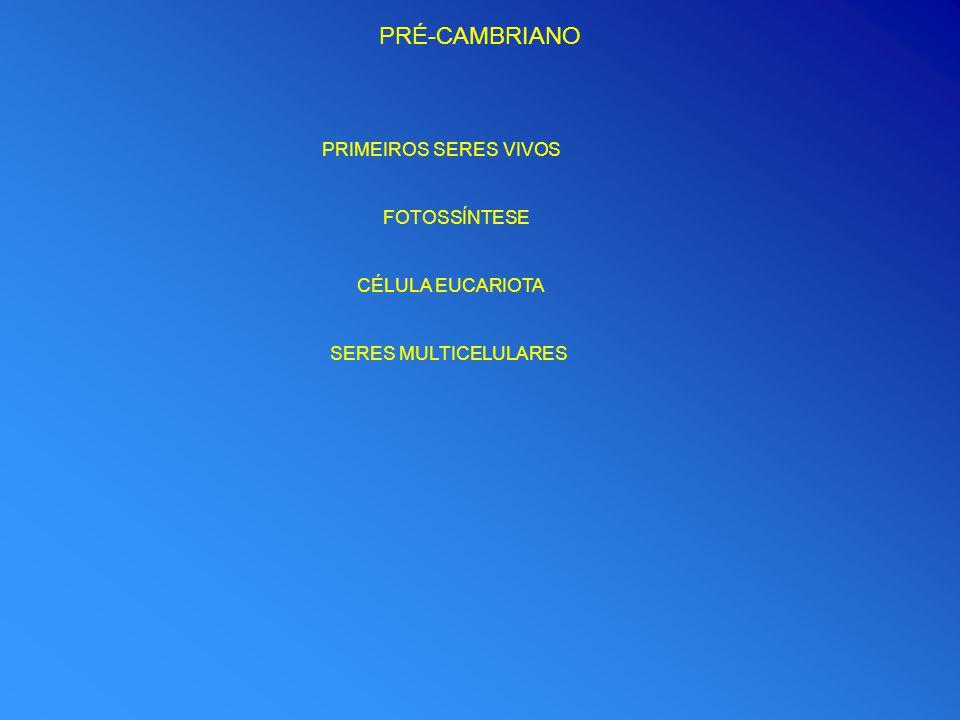 PRÉ-CAMBRIANO PRIMEIROS SERES VIVOS FOTOSSÍNTESE CÉLULA EUCARIOTA SERES MULTICELULARES