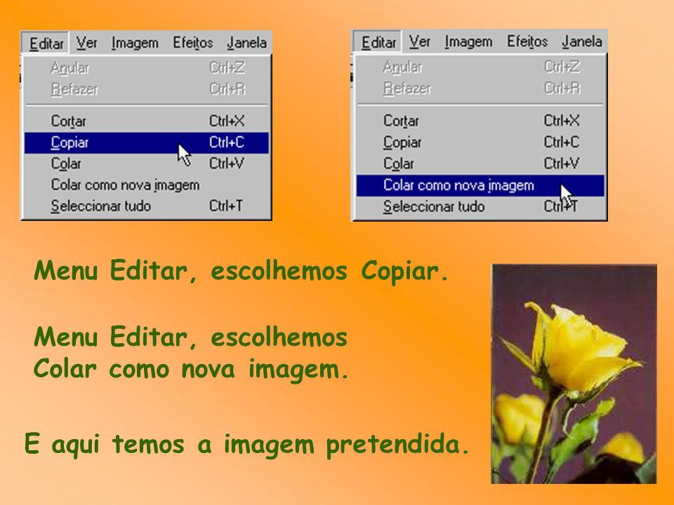 Menu Editar, escolhemos Copiar. Menu Editar, escolhemos Colar como nova imagem. E aqui temos a imagem pretendida.