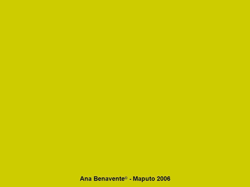 Ana Benavente © - Maputo 2006