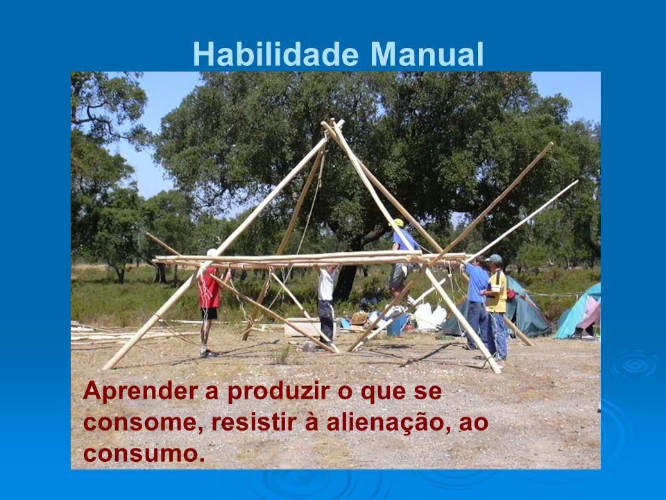Habilidade Manual Aprender a produzir o que se consome, resistir à alienação, ao consumo.