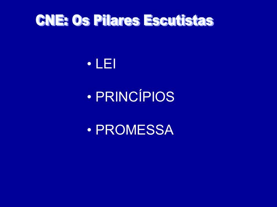 LEI PRINCÍPIOS PROMESSA