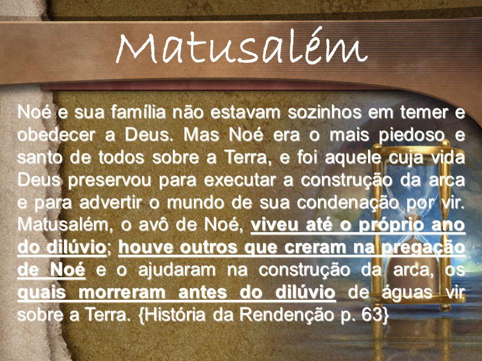 Noé e sua família não estavam sozinhos em temer e obedecer a Deus.