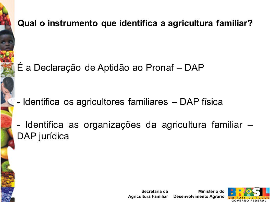 Qual o instrumento que identifica a agricultura familiar? É a Declaração de Aptidão ao Pronaf – DAP - Identifica os agricultores familiares – DAP físi