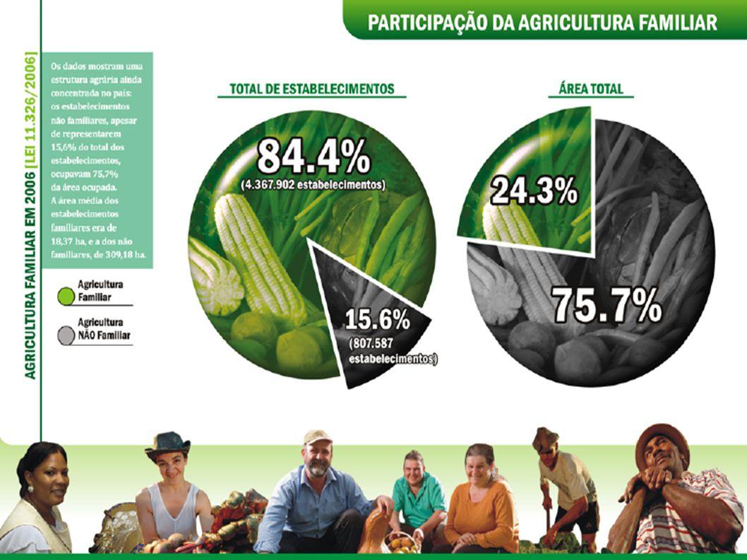 EVOLUÇÃO HISTÓRICA DO PRONAF - Plano Safra 2009/2010: 15 bilhões de reais. FONTE: SAF/MDA