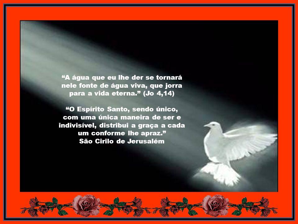 Caríssimos Com a festa de Pentecostes termina o Tempo Pascal e voltamos ao Tempo Comum, que vai até ao Sábado que antecede o primeiro domingo do Adven