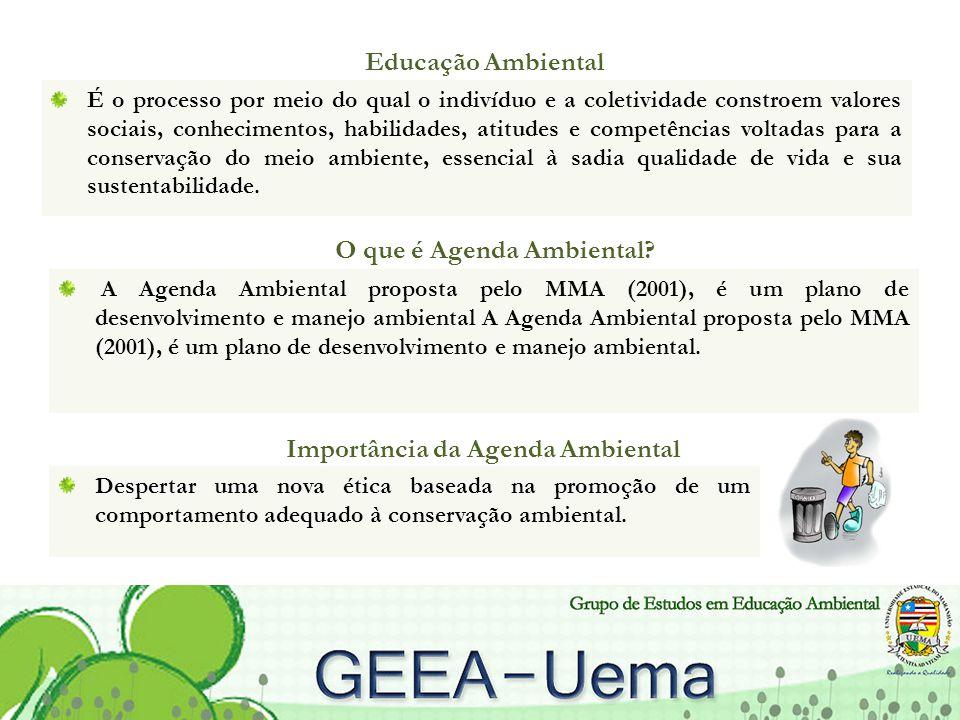 Educação Ambiental É o processo por meio do qual o indivíduo e a coletividade constroem valores sociais, conhecimentos, habilidades, atitudes e compet