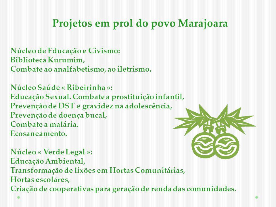 Projeto socioambiental 2011/2012 Ilha do Marajó – Pará – Amazônia Legal
