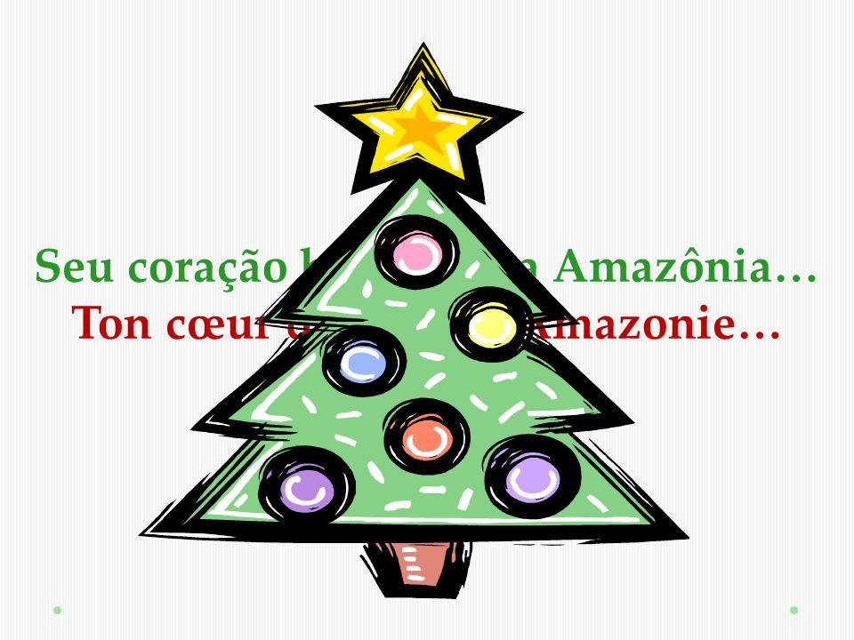 www.fundacaovillasboas.com