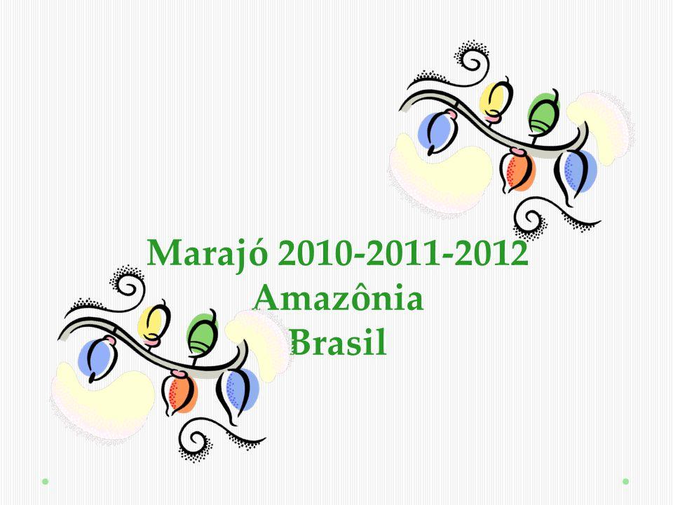 Seu coração batendo na Amazônia… Ton cœur qui bat en Amazonie…