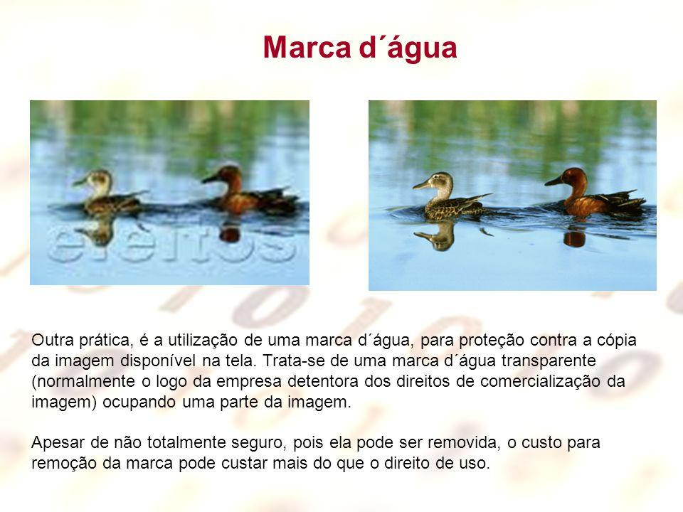 Outra prática, é a utilização de uma marca d´água, para proteção contra a cópia da imagem disponível na tela.
