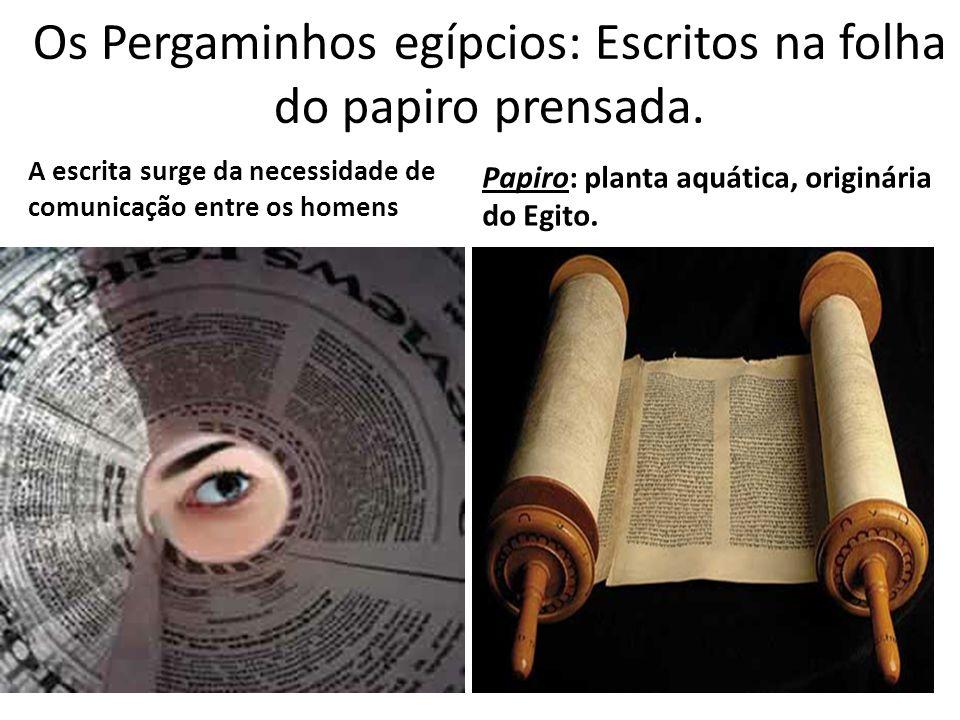 Os Pergaminhos egípcios: Escritos na folha do papiro prensada. A escrita surge da necessidade de comunicação entre os homens Papiro: planta aquática,
