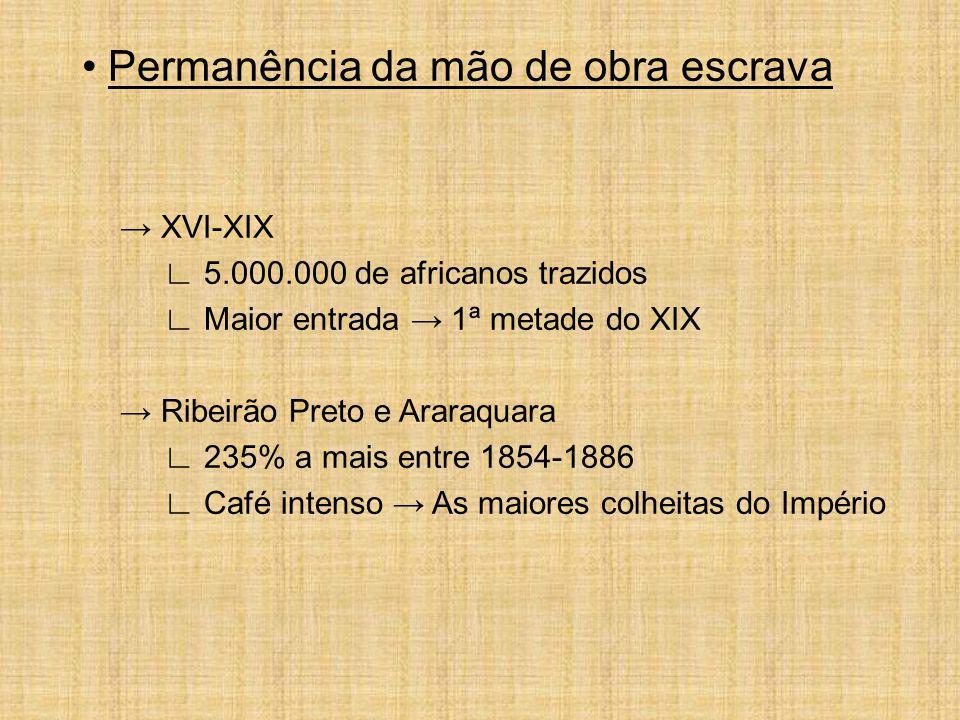 Permanência da mão de obra escrava XVI-XIX 5.000.000 de africanos trazidos Maior entrada 1ª metade do XIX Ribeirão Preto e Araraquara 235% a mais entr