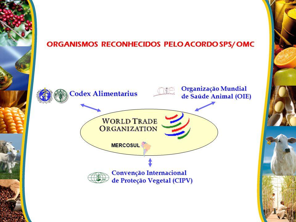 ORGANISMOS RECONHECIDOS PELO ACORDO SPS/ OMC Codex Alimentarius Convenção Internacional de Proteção Vegetal (CIPV) MERCOSUL Organização Mundial de Saú