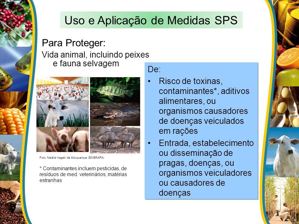 Para Proteger: Vida animal, incluindo peixes e fauna selvagem De: Risco de toxinas, contaminantes*, aditivos alimentares, ou organismos causadores de