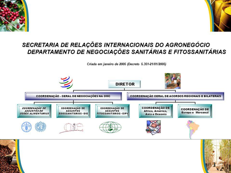 SECRETARIA DE RELAÇÕES INTERNACIONAIS DO AGRONEGÓCIO DEPARTAMENTO DE NEGOCIAÇÕES SANITÁRIAS E FITOSSANITÁRIAS Criada em janeiro de 2005 (Decreto 5.351