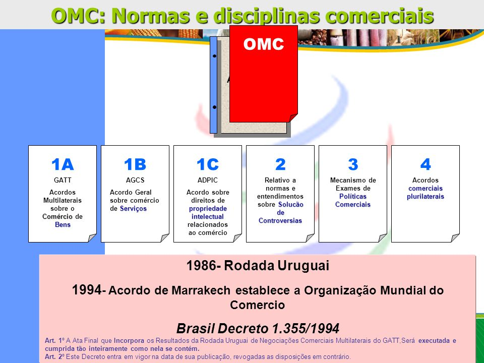 DNSF Tornar o agronegócio brasileiro reconhecido internacionalmente pela sua qualidade sanitária e fitossanitária Alexandre P.