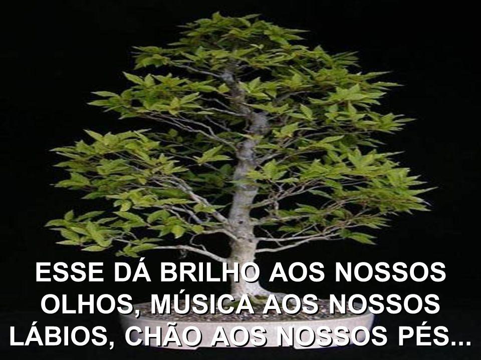 AS VEZES UM DESSES AMIGOS DE ALMA SE INSTALA EM NOSSO CORAÇÃO E ENTÃO O CHAMAMOS DE AMIGO NAMORADO...