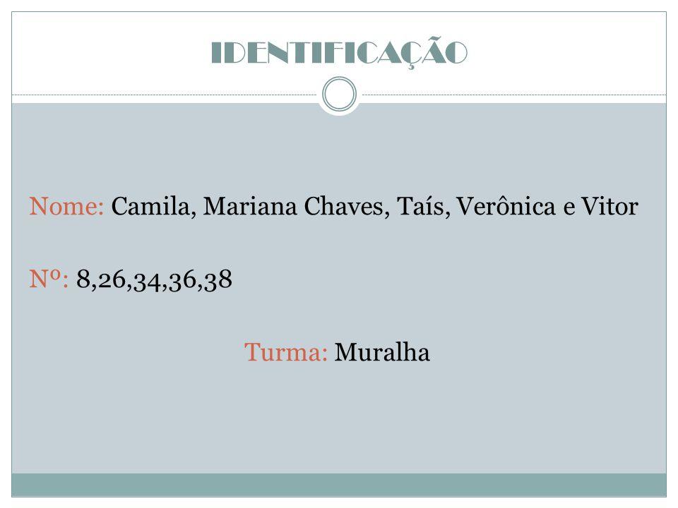 IDENTIFICAÇÃO Nome: Camila, Mariana Chaves, Taís, Verônica e Vitor Nº: 8,26,34,36,38 Turma: Muralha