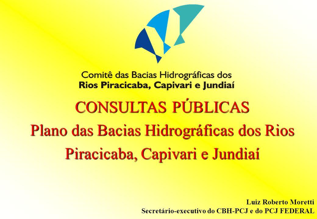 CONSULTAS PÚBLICAS Plano das Bacias Hidrográficas dos Rios Piracicaba, Capivari e Jundiaí Luiz Roberto Moretti Secretário-executivo do CBH-PCJ e do PC