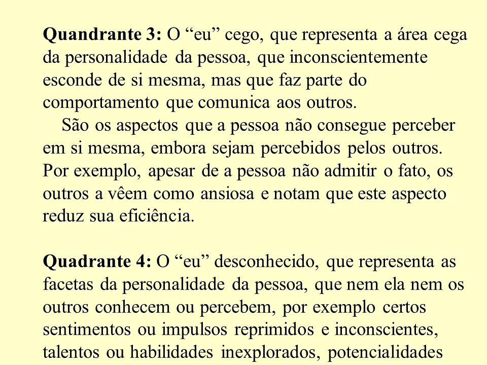 Quandrante 3: O eu cego, que representa a área cega da personalidade da pessoa, que inconscientemente esconde de si mesma, mas que faz parte do compor