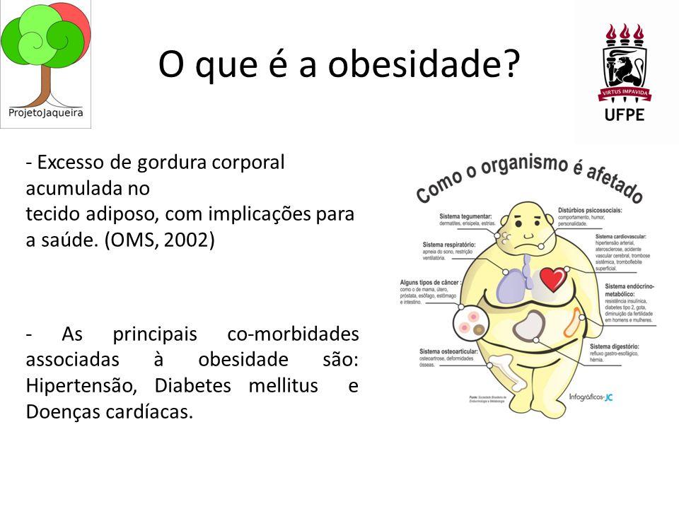 O que é a obesidade.
