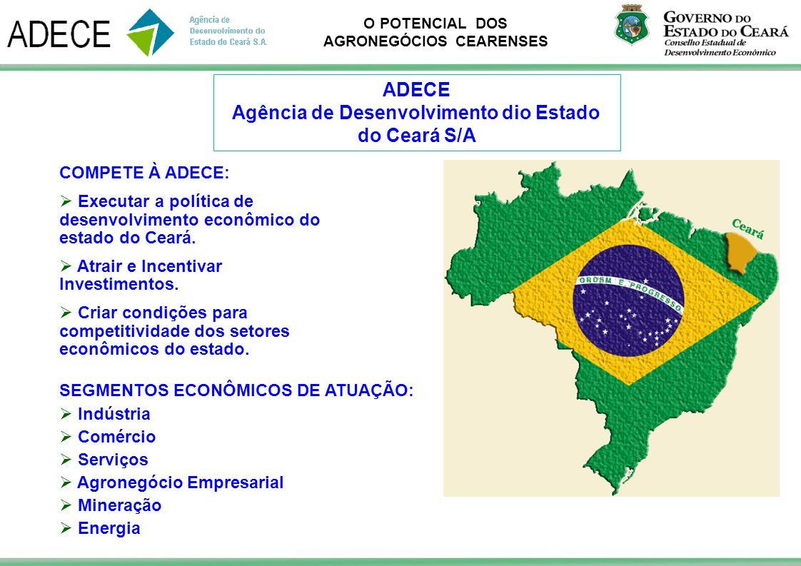 O POTENCIAL DOS AGRONEGÓCIOS CEARENSES COMPETE À ADECE: Executar a política de desenvolvimento econômico do estado do Ceará. Atrair e Incentivar Inves