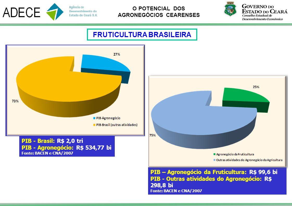 O POTENCIAL DOS AGRONEGÓCIOS CEARENSES PIB - Brasil: R$ 2,0 tri PIB - Agronegócio: R$ 534,77 bi Fonte: BACEN e CNA/2007 PIB – Agronegócio da Fruticult