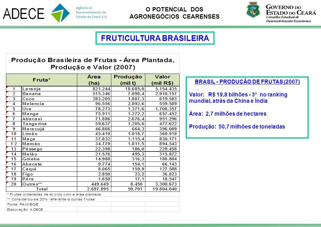 O POTENCIAL DOS AGRONEGÓCIOS CEARENSES BRASIL - PRODUÇÃO DE FRUTAS (2007) Valor: R$ 19,8 bilhões - 3º no ranking mundial, atrás da China e Índia Área: