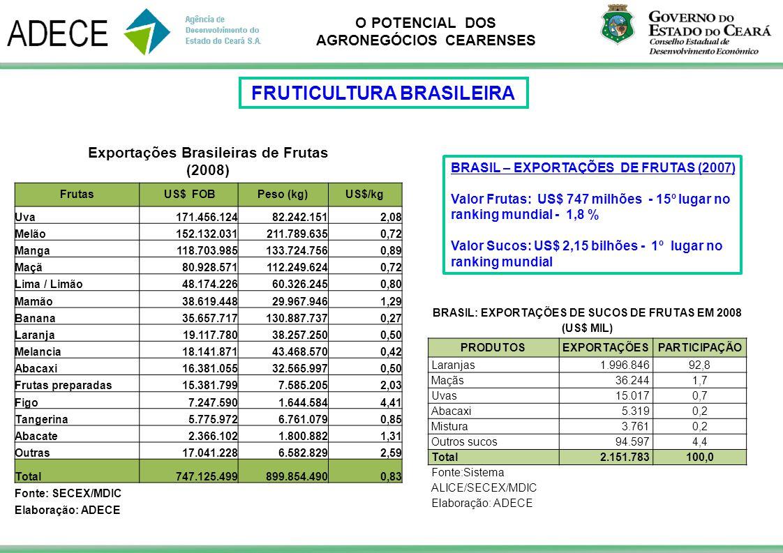 O POTENCIAL DOS AGRONEGÓCIOS CEARENSES BRASIL – EXPORTAÇÕES DE FRUTAS (2007) Valor Frutas: US$ 747 milhões - 15º lugar no ranking mundial - 1,8 % Valo