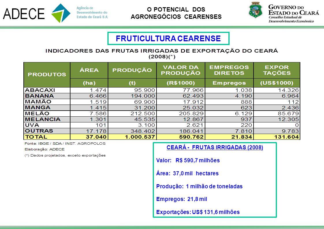 O POTENCIAL DOS AGRONEGÓCIOS CEARENSES FRUTICULTURA CEARENSE CEARÁ - FRUTAS IRRIGADAS (2008) Valor: R$ 590,7 milhões Área: 37,0 mil hectares Produção: