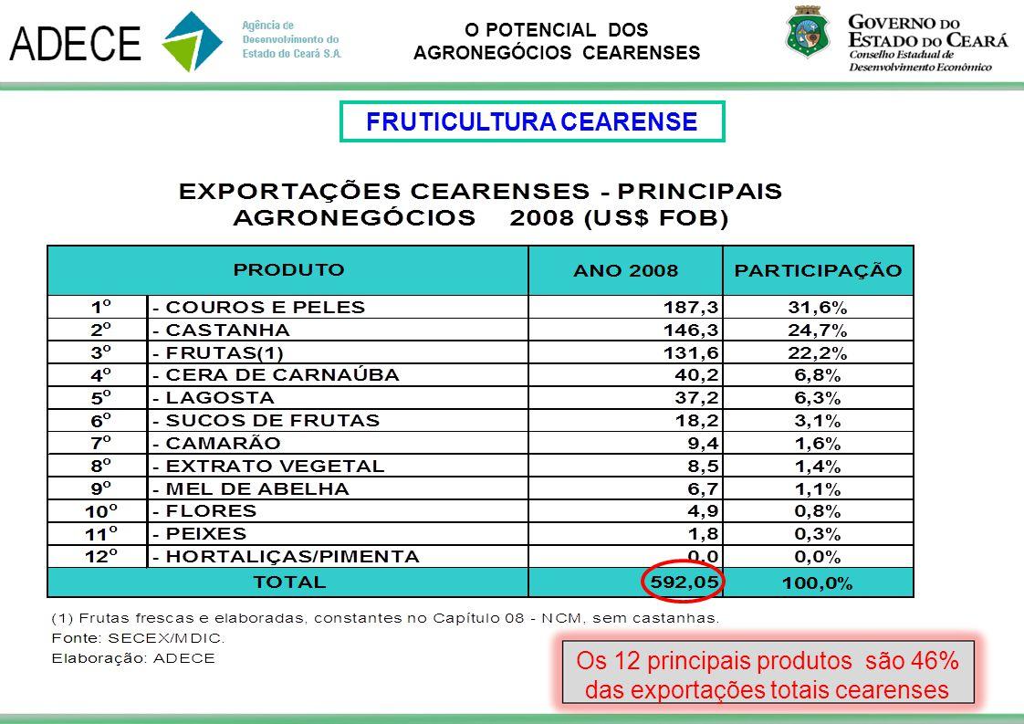 O POTENCIAL DOS AGRONEGÓCIOS CEARENSES Os 12 principais produtos são 46% das exportações totais cearenses FRUTICULTURA CEARENSE