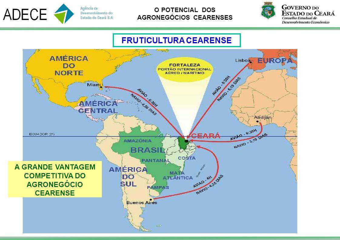 O POTENCIAL DOS AGRONEGÓCIOS CEARENSES A GRANDE VANTAGEM COMPETITIVA DO AGRONEGÓCIO CEARENSE FRUTICULTURA CEARENSE