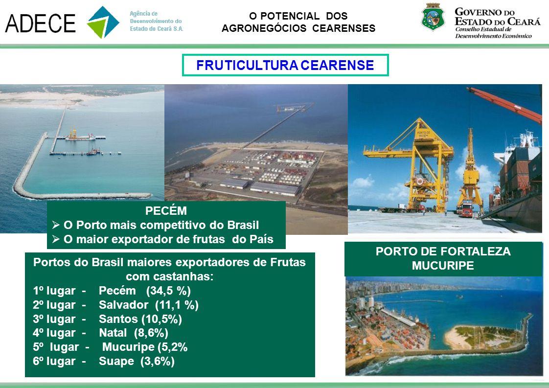 O POTENCIAL DOS AGRONEGÓCIOS CEARENSES PORTO DE FORTALEZA MUCURIPE PECÉM O Porto mais competitivo do Brasil O maior exportador de frutas do País Porto