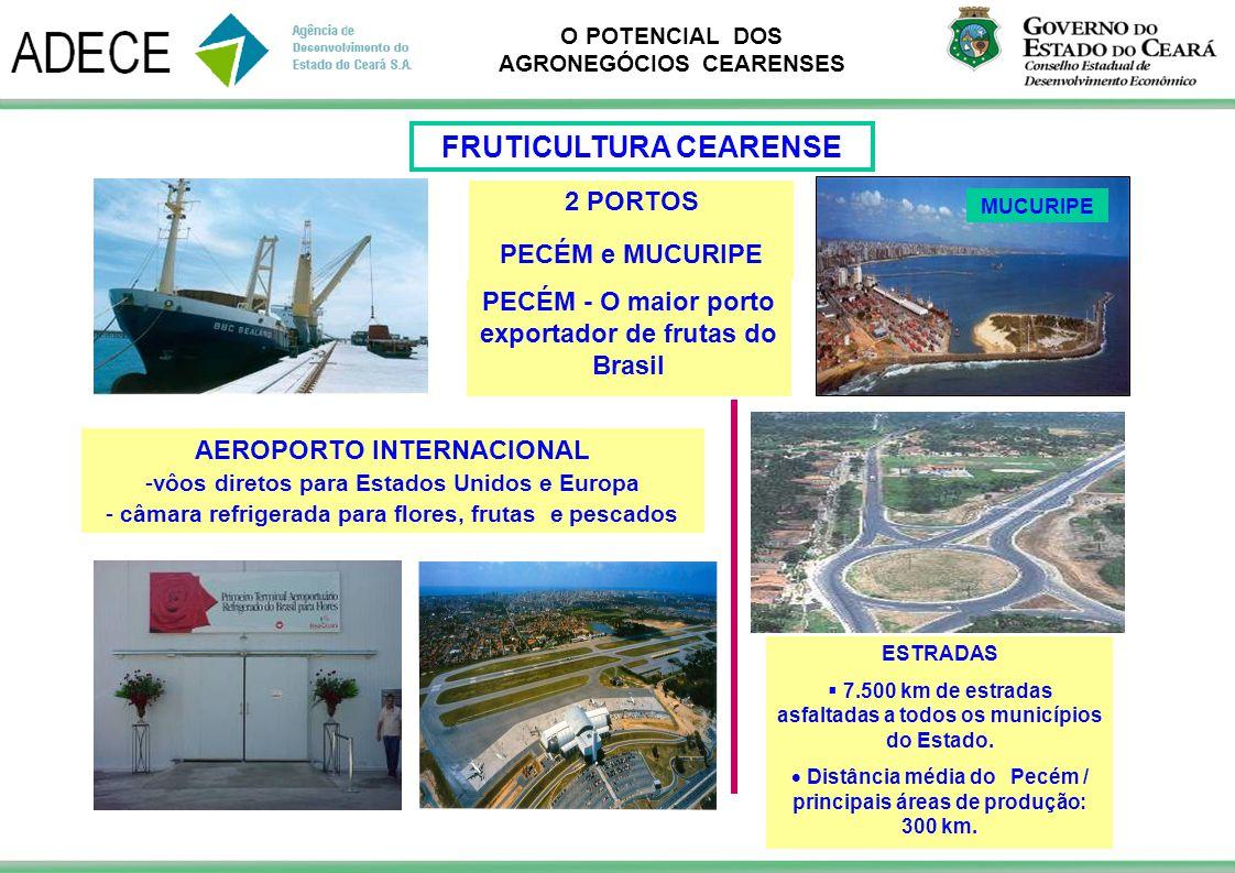 O POTENCIAL DOS AGRONEGÓCIOS CEARENSES AEROPORTO INTERNACIONAL -vôos diretos para Estados Unidos e Europa - câmara refrigerada para flores, frutas e p