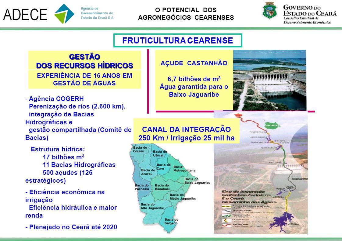 O POTENCIAL DOS AGRONEGÓCIOS CEARENSES GESTÃO DOS RECURSOS HÍDRICOS AÇUDE CASTANHÃO 6,7 bilhões de m 3 Água garantida para o Baixo Jaguaribe EXPERIÊNC