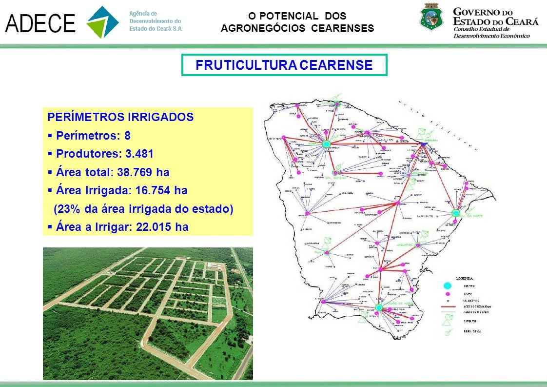 O POTENCIAL DOS AGRONEGÓCIOS CEARENSES PERÍMETROS IRRIGADOS Perímetros: 8 Produtores: 3.481 Área total: 38.769 ha Área Irrigada: 16.754 ha (23% da áre