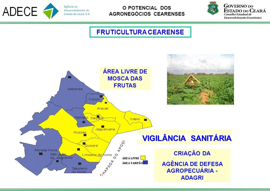 O POTENCIAL DOS AGRONEGÓCIOS CEARENSES ÁREA LIVRE DE MOSCA DAS FRUTAS CRIAÇÃO DA AGÊNCIA DE DEFESA AGROPECUÁRIA - ADAGRI VIGILÂNCIA SANITÁRIA FRUTICUL