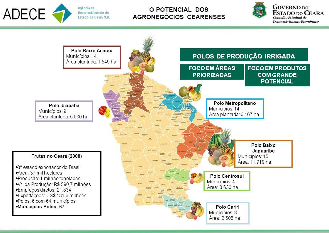 O POTENCIAL DOS AGRONEGÓCIOS CEARENSES Polo Centrosul Municípios: 4 Área: 3.630 ha Polo Baixo Jaguaribe Municípios: 15 Área: 11.919 ha Polo Metropolit