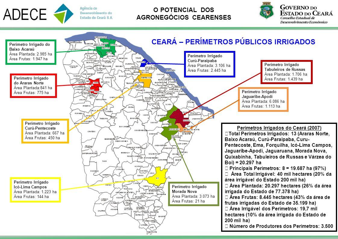 O POTENCIAL DOS AGRONEGÓCIOS CEARENSES Perímetro Irrigado Curú-Pentecoste Área Plantada: 667 ha Área Frutas: 450 ha Perímetro Irrigado Curú-Paraipaba